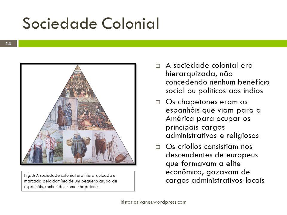 Sociedade Colonial A sociedade colonial era hierarquizada, não concedendo nenhum benefício social ou políticos aos índios.