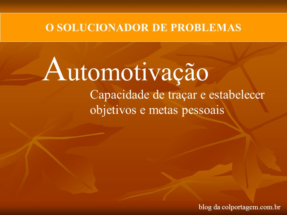 O SOLUCIONADOR DE PROBLEMAS
