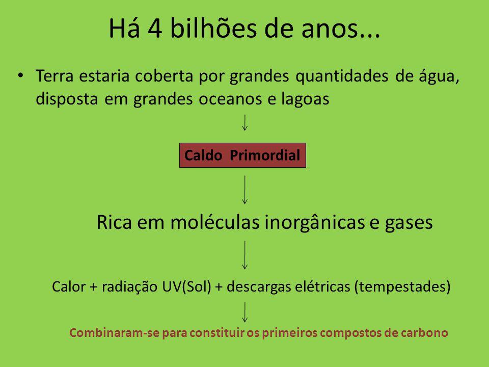 Há 4 bilhões de anos... Rica em moléculas inorgânicas e gases