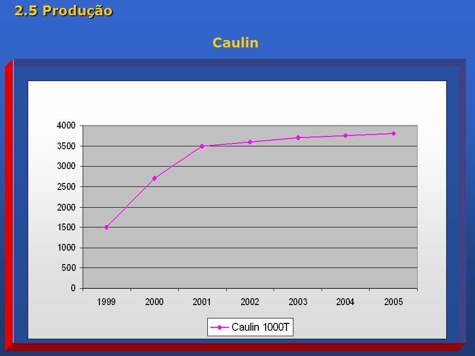 2.5 Produção Caulin