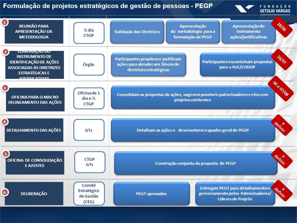 Formulação de projetos estratégicos de gestão de pessoas - PEGP