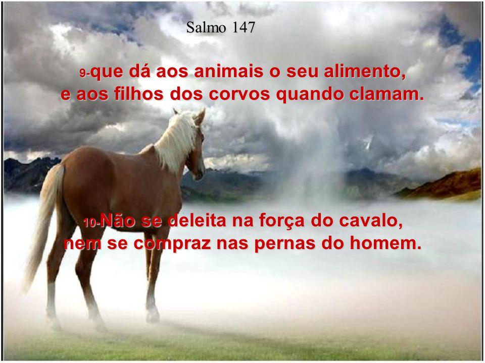 Salmo 147 9-que dá aos animais o seu alimento, e aos filhos dos corvos quando clamam.