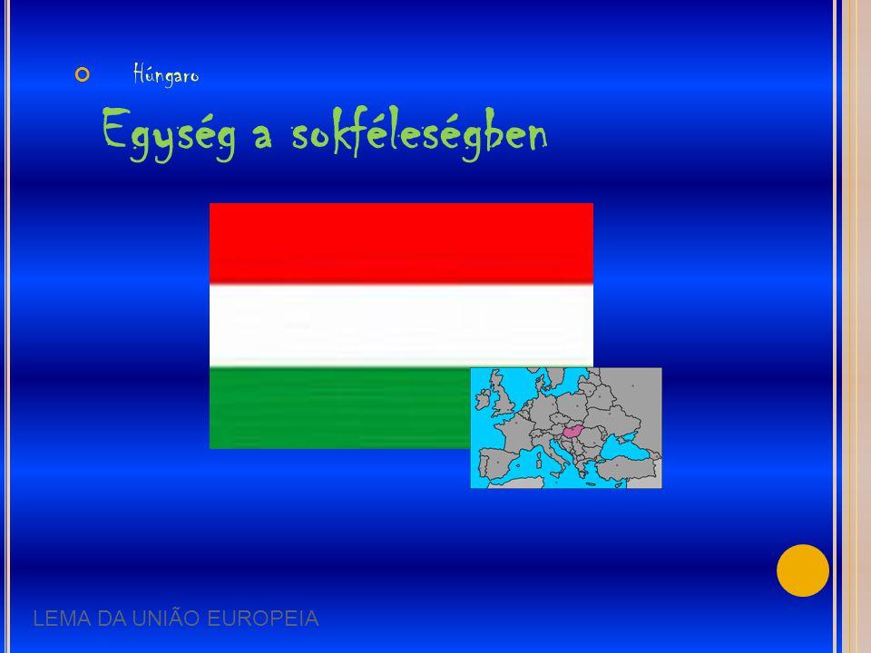 Húngaro Egység a sokféleségben