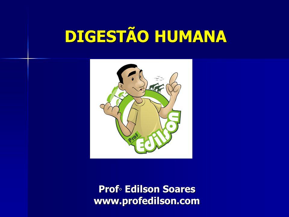 DIGESTÃO HUMANA Prof◦ Edilson Soares www.profedilson.com