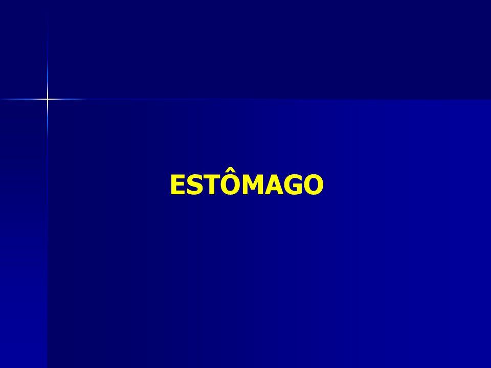 ESTÔMAGO