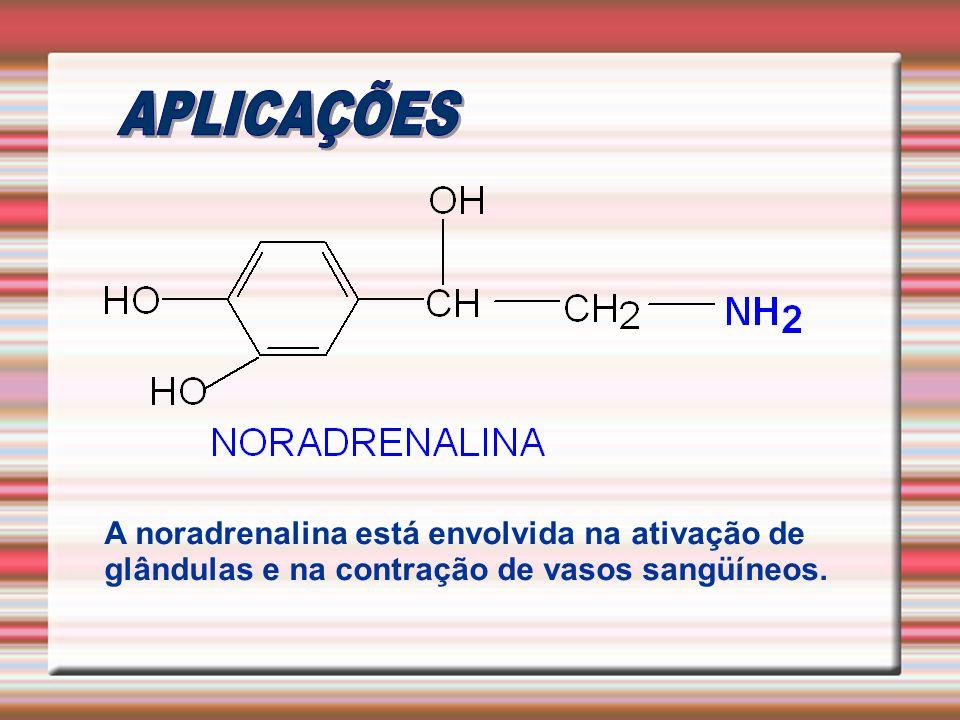 APLICAÇÕES A noradrenalina está envolvida na ativação de glândulas e na contração de vasos sangüíneos.