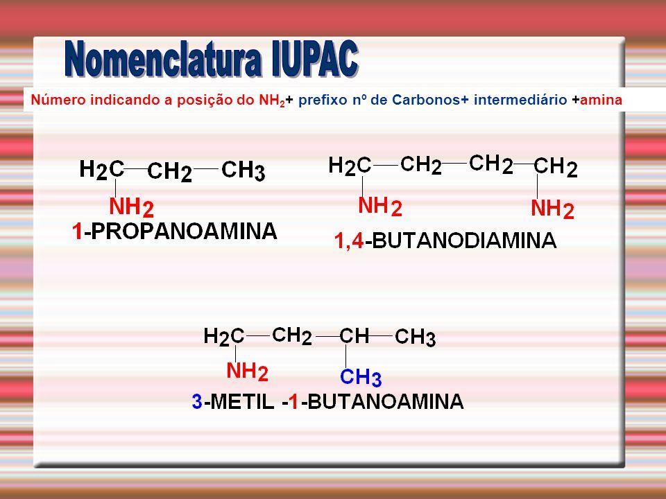 Nomenclatura IUPAC Número indicando a posição do NH2+ prefixo nº de Carbonos+ intermediário +amina