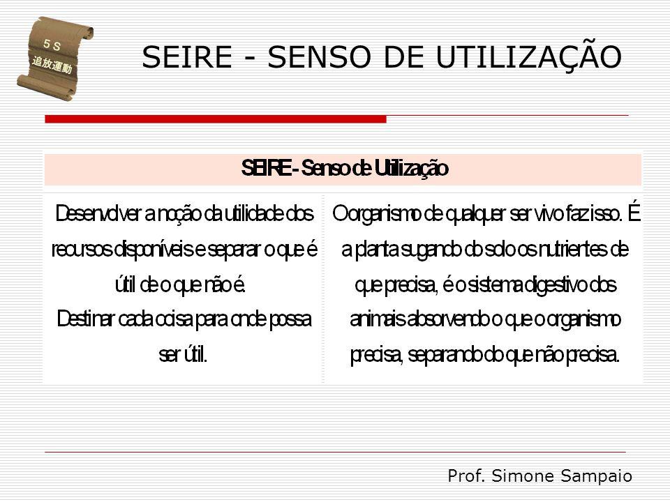 SEIRE - SENSO DE UTILIZAÇÃO