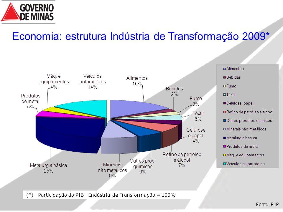 Economia: estrutura Indústria de Transformação 2009*