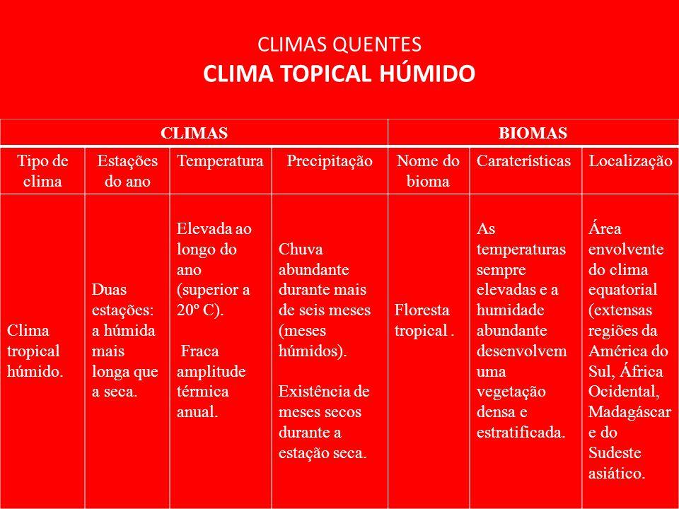 CLIMAS QUENTES CLIMA TOPICAL HÚMIDO