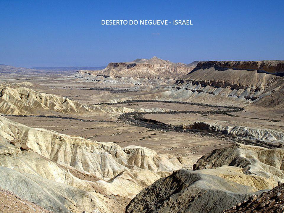 DESERTO DO NEGUEVE - ISRAEL