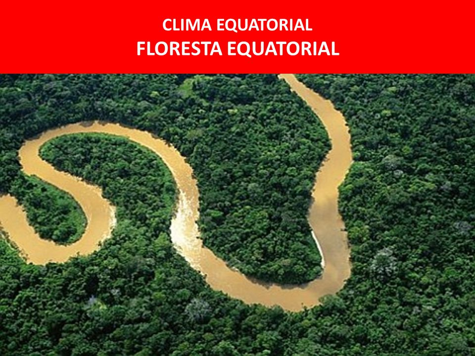 CLIMA EQUATORIAL FLORESTA EQUATORIAL