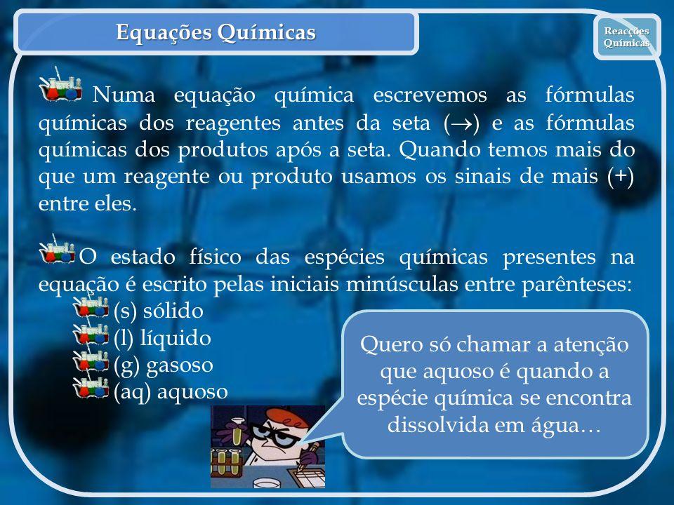 Equações Químicas Reacções Químicas.