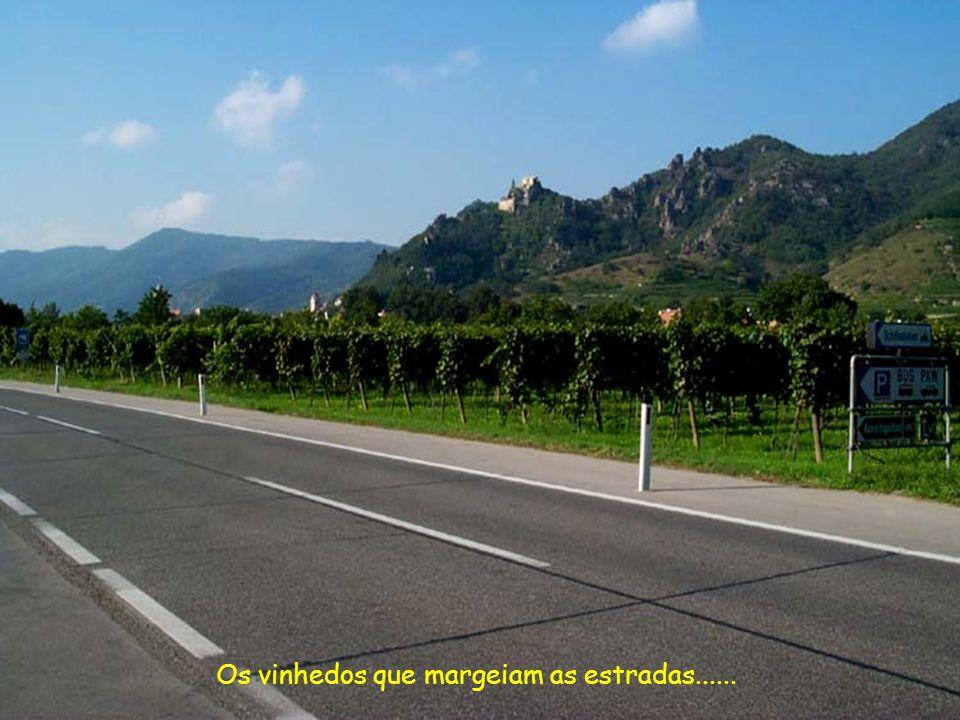 Os vinhedos que margeiam as estradas......