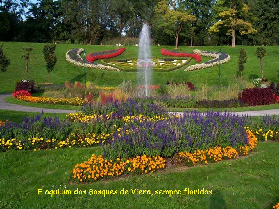 E aqui um dos Bosques de Viena, sempre floridos...