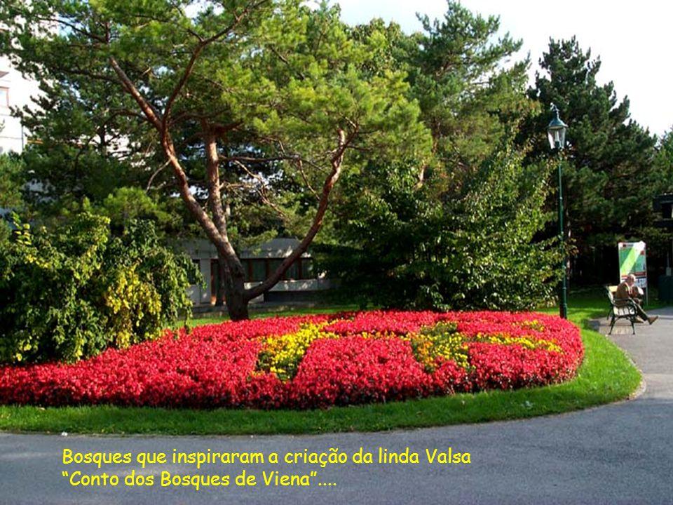 Bosques que inspiraram a criação da linda Valsa