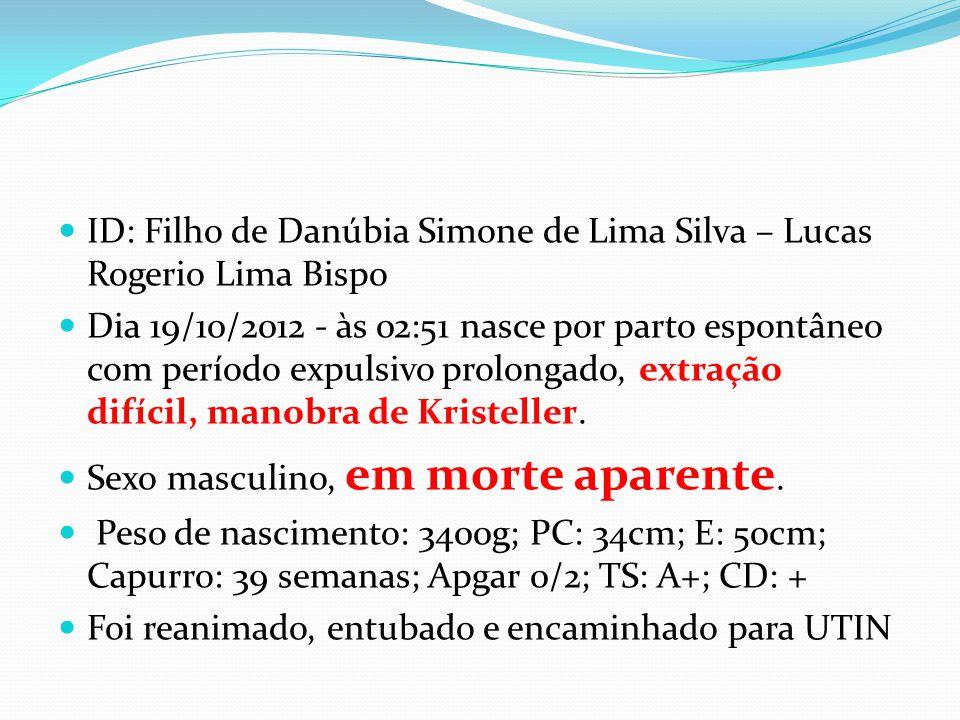 ID: Filho de Danúbia Simone de Lima Silva – Lucas Rogerio Lima Bispo