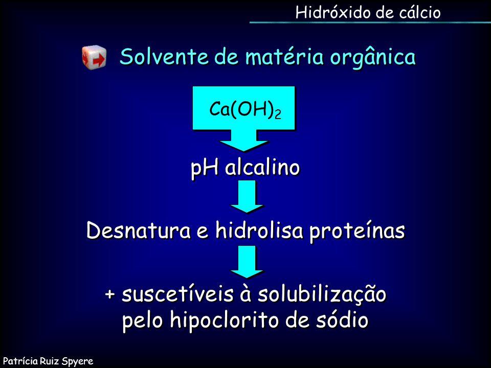 Desnatura e hidrolisa proteínas + suscetíveis à solubilização