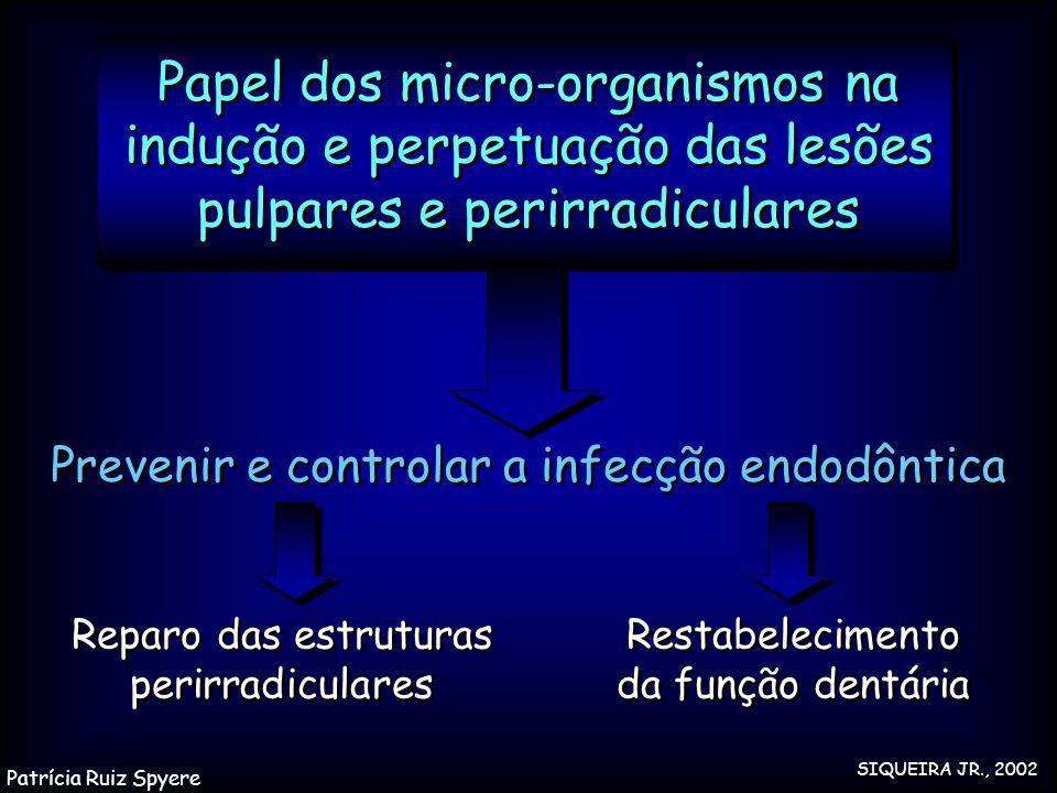 Papel dos micro-organismos na indução e perpetuação das lesões pulpares e perirradiculares