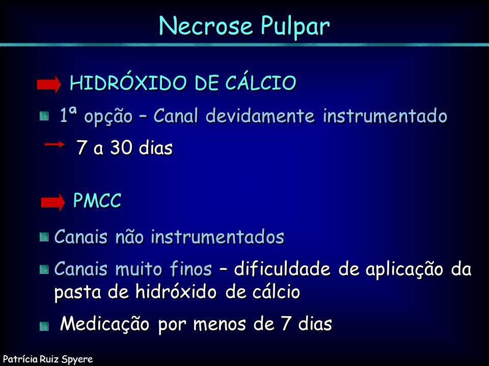 Necrose Pulpar HIDRÓXIDO DE CÁLCIO