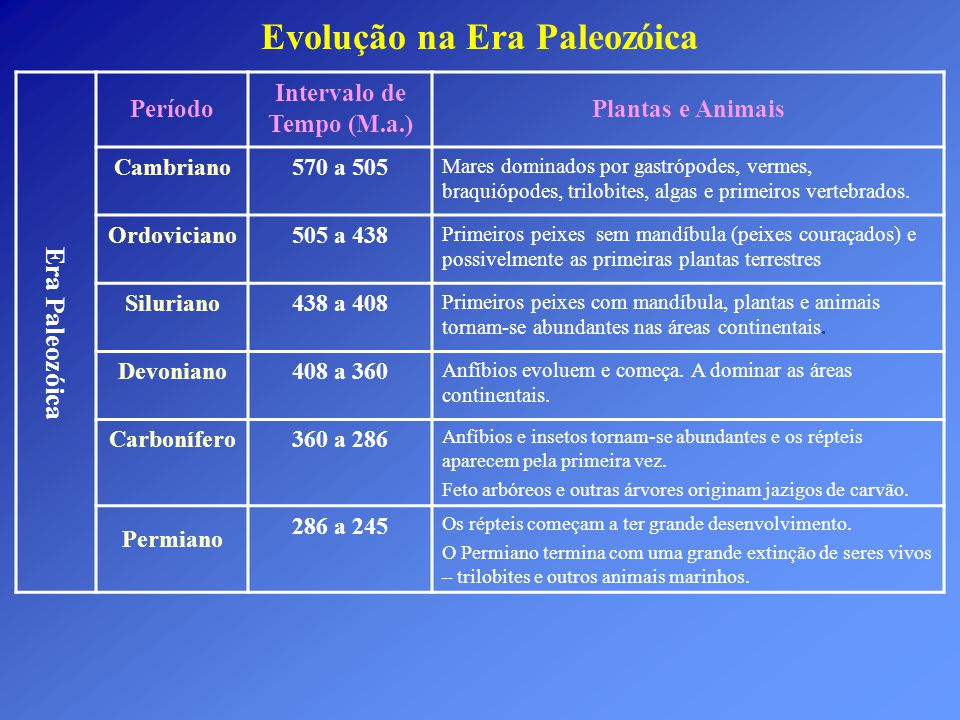 Evolução na Era Paleozóica Intervalo de Tempo (M.a.)