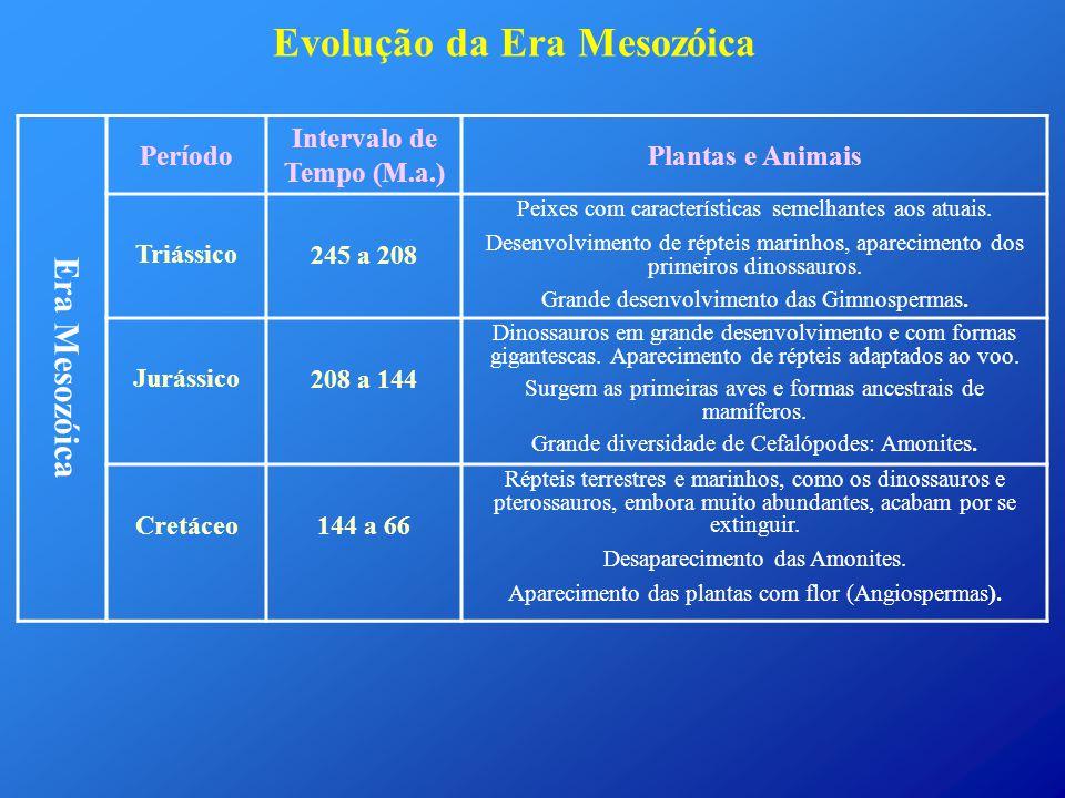 Intervalo de Tempo (M.a.)