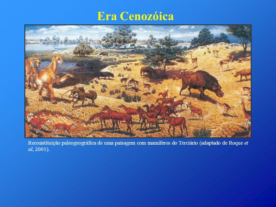 Era Cenozóica Reconstituição paleogeográfica de uma paisagem com mamíferos do Terciário (adaptado de Roque et al, 2001).