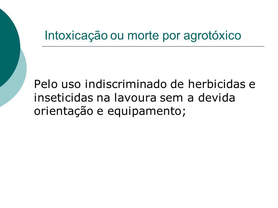 Intoxicação ou morte por agrotóxico