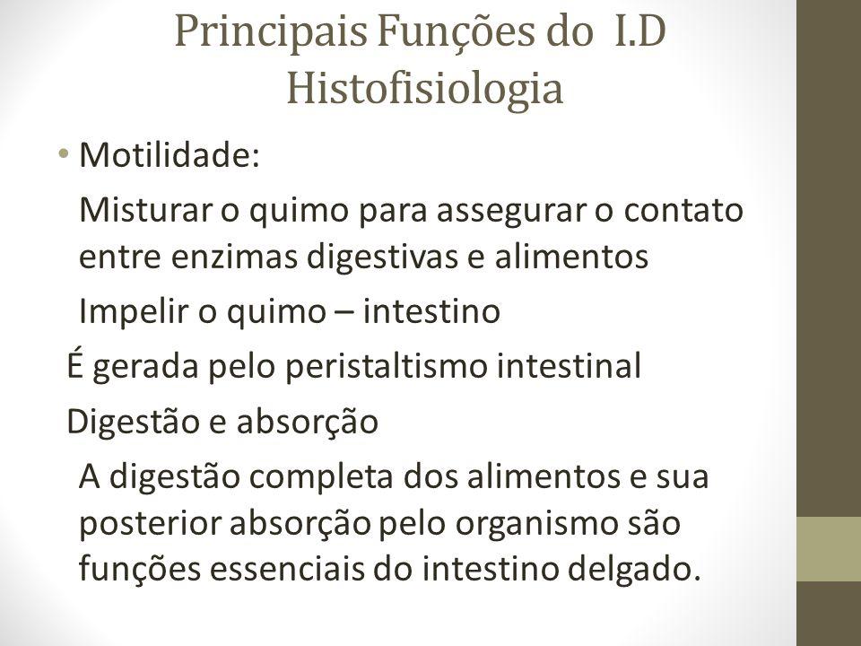 Principais Funções do I.D Histofisiologia