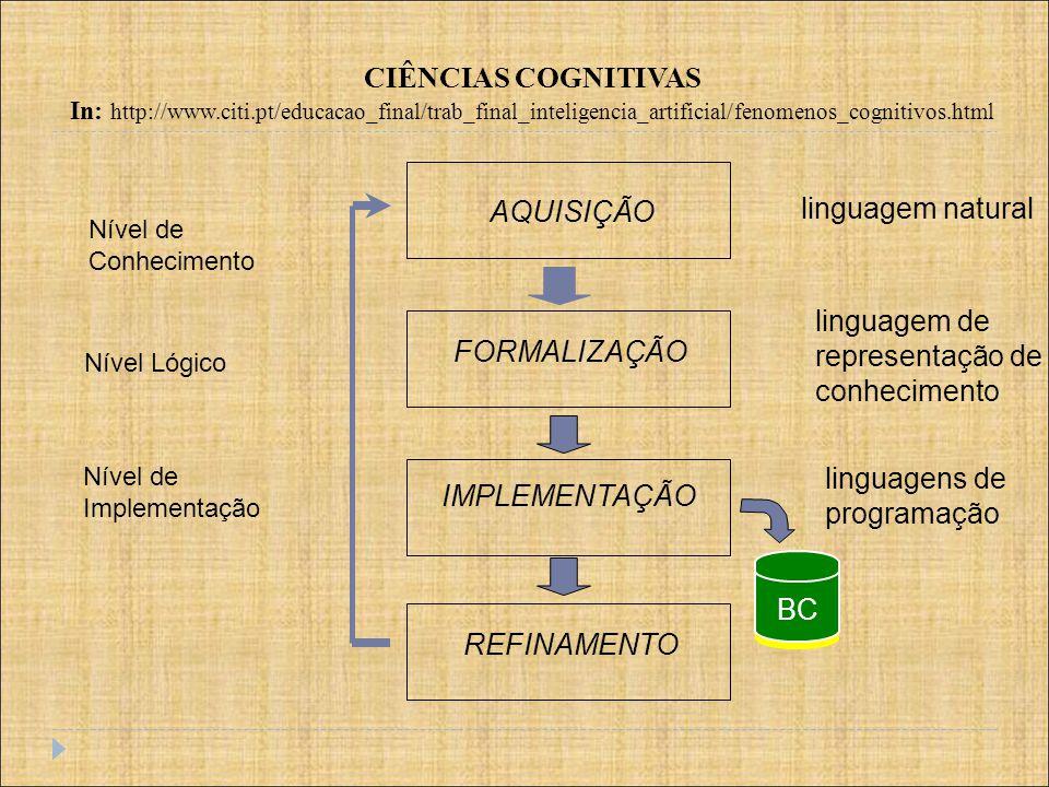 linguagem de representação de conhecimento FORMALIZAÇÃO