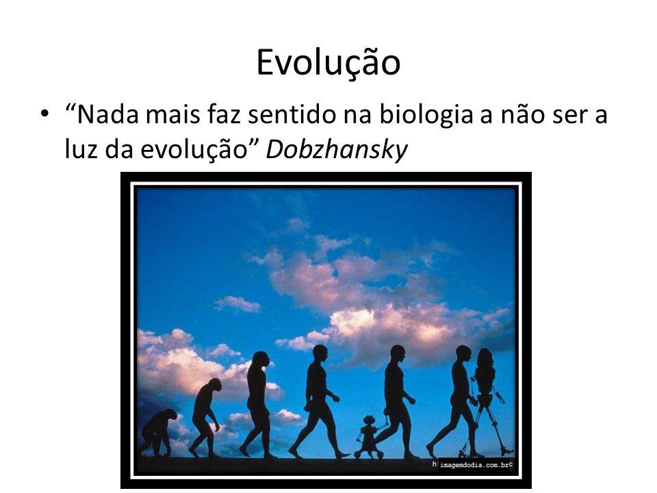 Evolução Nada mais faz sentido na biologia a não ser a luz da evolução Dobzhansky