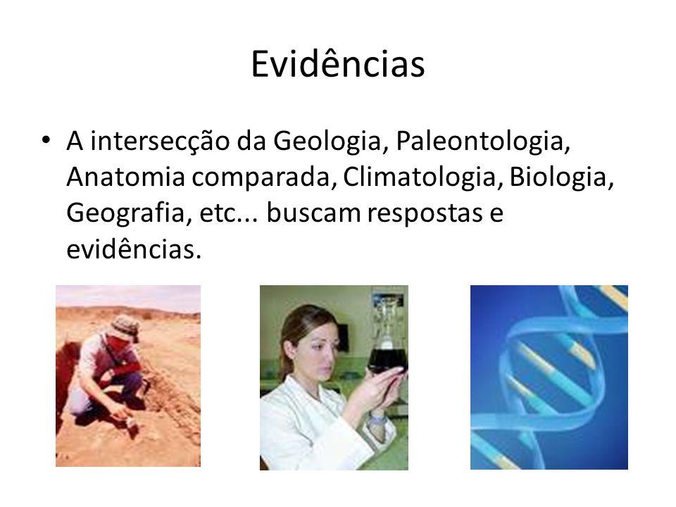 Evidências A intersecção da Geologia, Paleontologia, Anatomia comparada, Climatologia, Biologia, Geografia, etc...