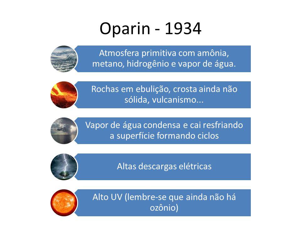 Oparin - 1934 Atmosfera primitiva com amônia, metano, hidrogênio e vapor de água. Rochas em ebulição, crosta ainda não sólida, vulcanismo...