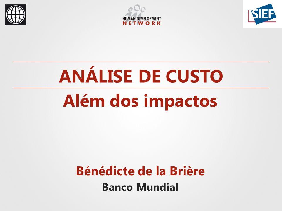 ANÁLISE DE CUSTO Além dos impactos Bénédicte de la Brière