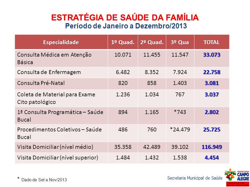 ESTRATÉGIA DE SAÚDE DA FAMÍLIA Período de Janeiro a Dezembro/2013