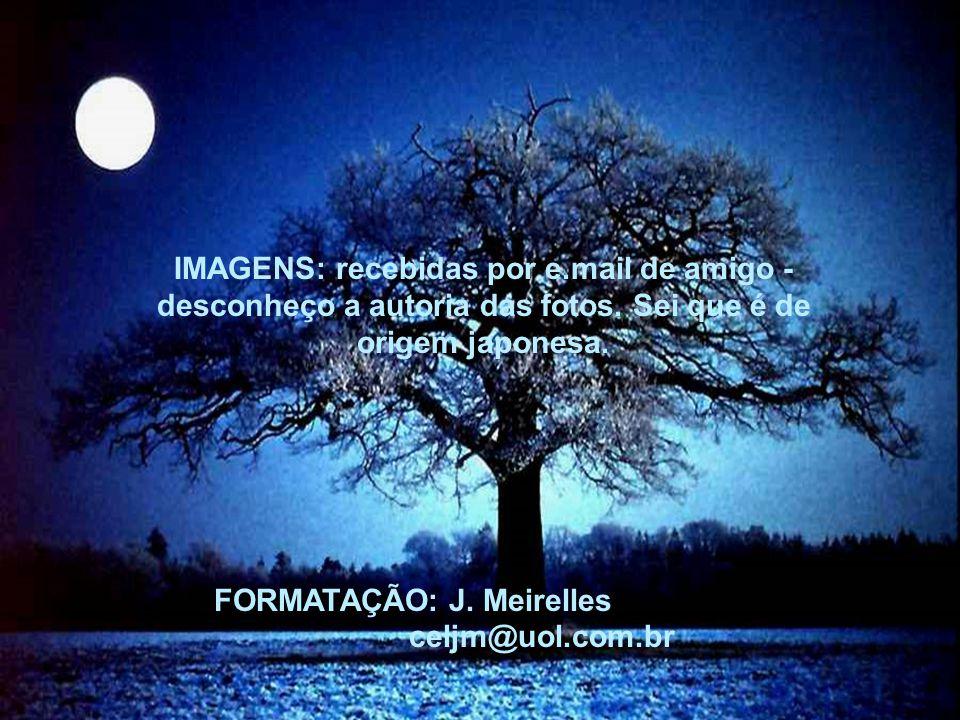 IMAGENS: recebidas por e