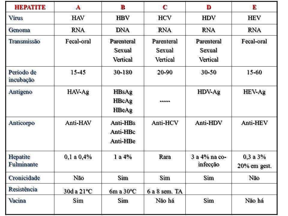 HEPATITE A. B. C. D. E. Vírus. HAV. HBV. HCV. HDV. HEV. Genoma. RNA. DNA. Transmissão.