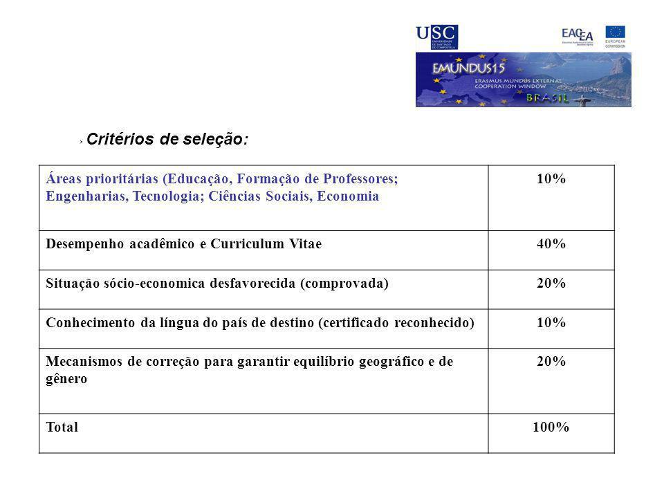 Desempenho acadêmico e Curriculum Vitae 40%