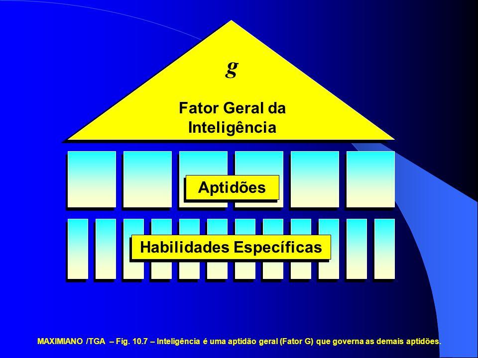 Fator Geral da Inteligência