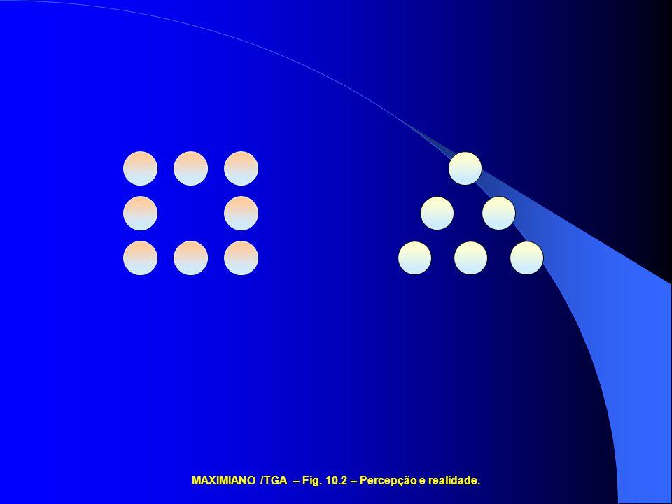 MAXIMIANO /TGA – Fig. 10.2 – Percepção e realidade.
