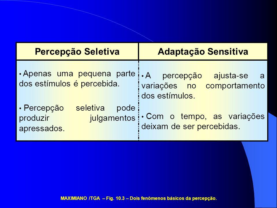 MAXIMIANO /TGA – Fig. 10.3 – Dois fenômenos básicos da percepção.
