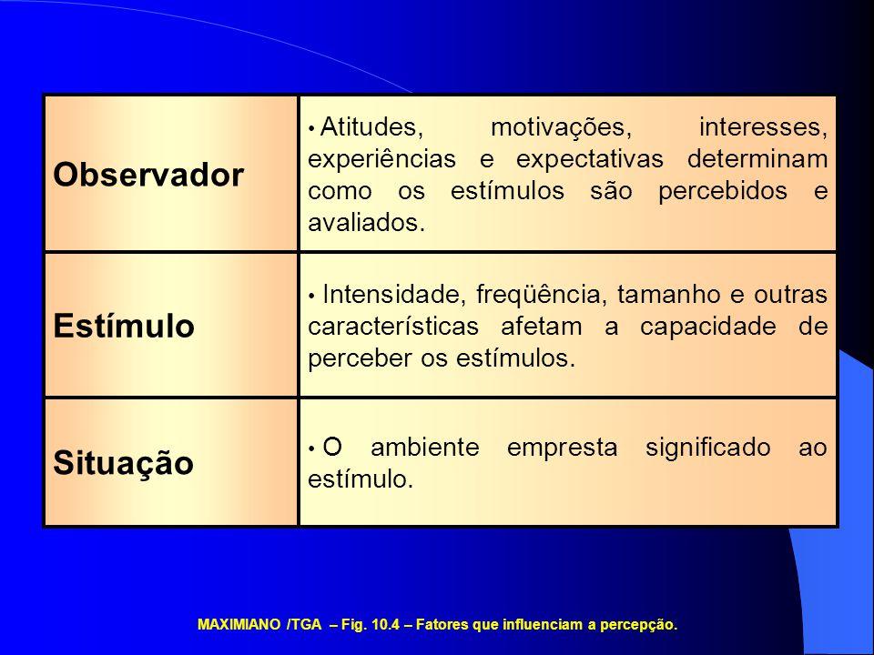 MAXIMIANO /TGA – Fig. 10.4 – Fatores que influenciam a percepção.