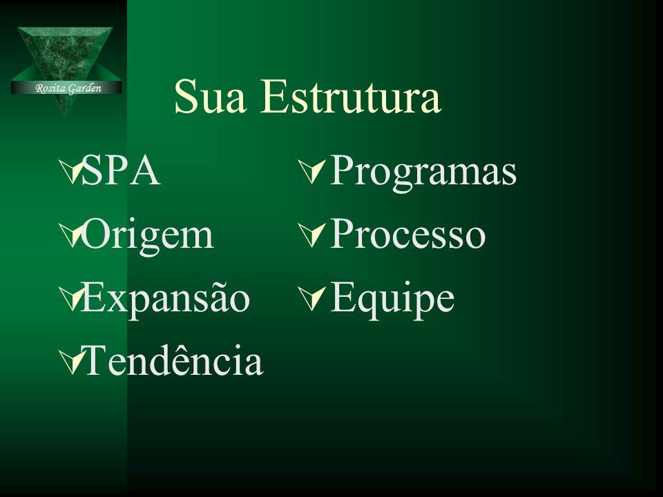 Sua Estrutura SPA Origem Expansão Tendência Programas Processo Equipe