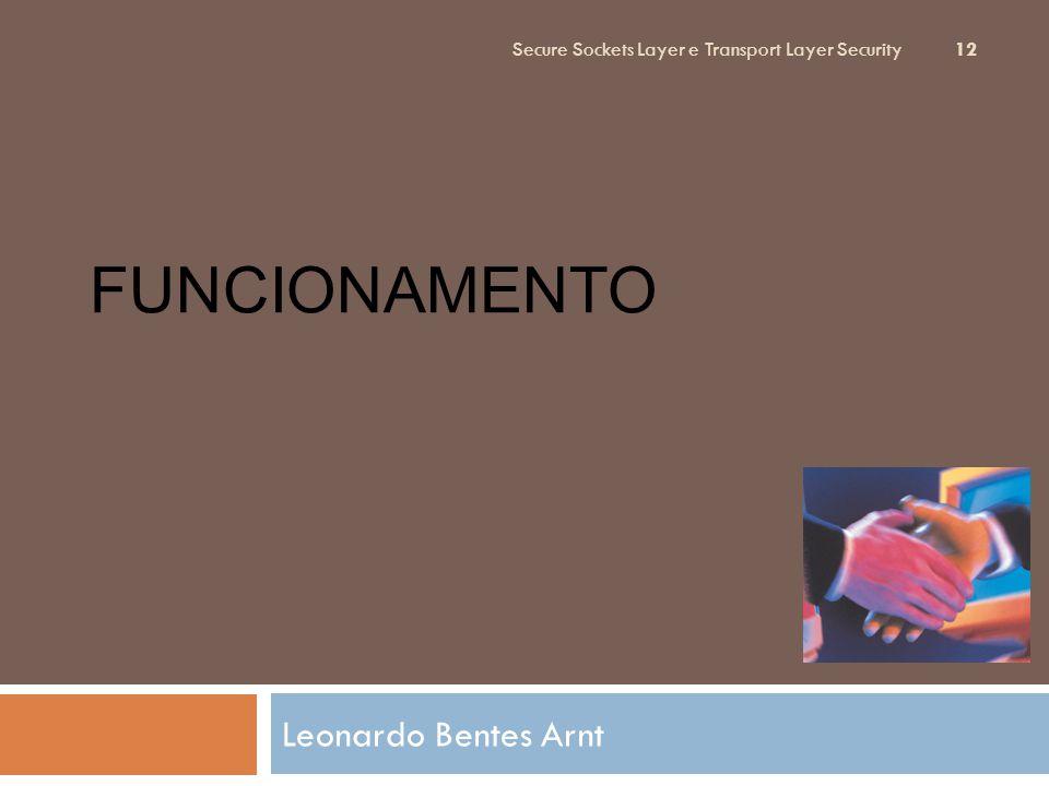 FUncionamento Leonardo Bentes Arnt
