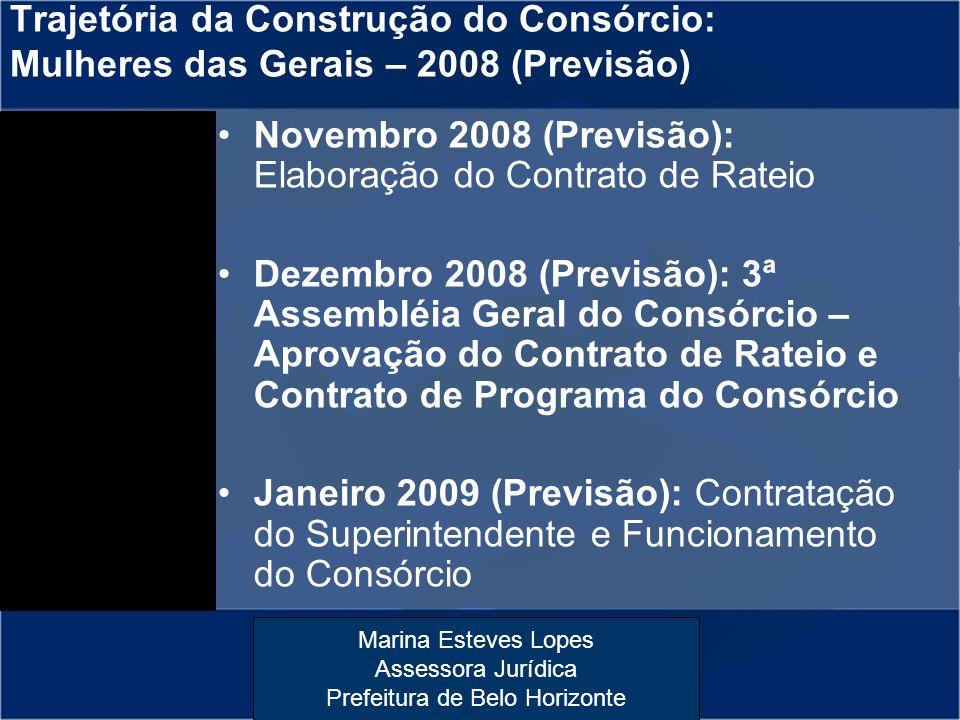 Trajetória da Construção do Consórcio: Mulheres das Gerais – 2008 (Previsão)