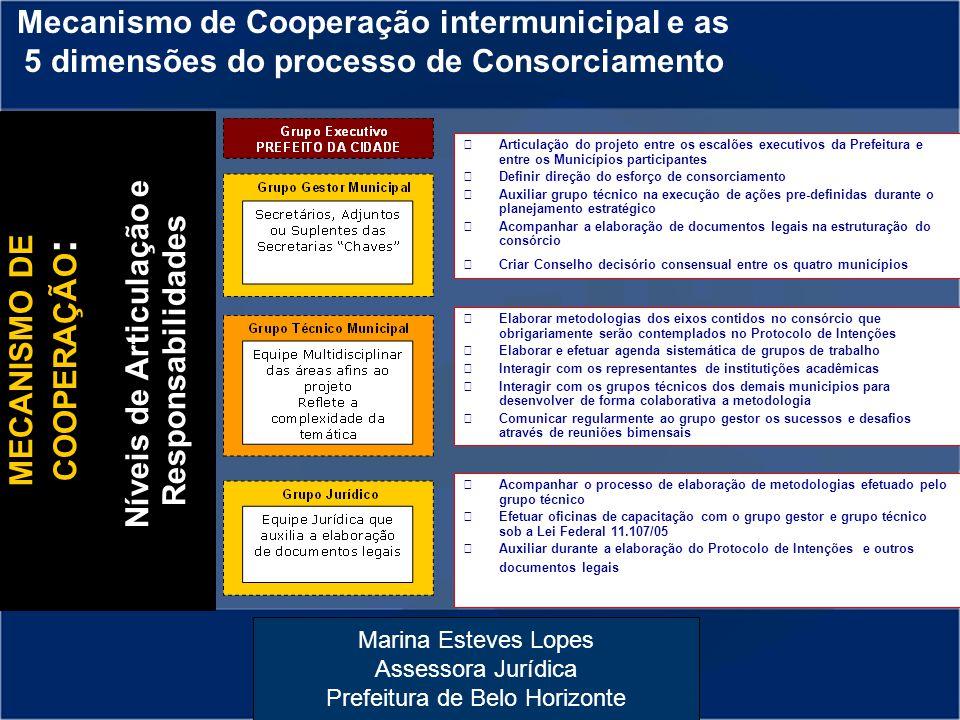 Níveis de Articulação e Responsabilidades MECANISMO DE COOPERAÇÃO: