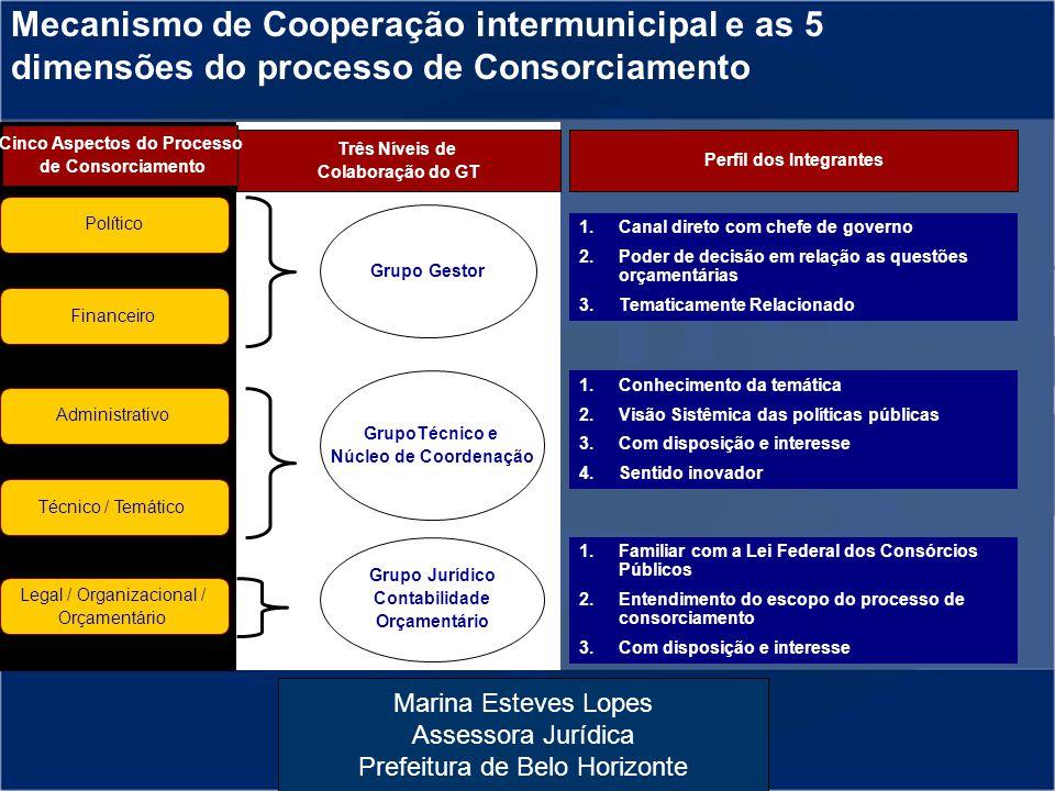 Cinco Aspectos do Processo Perfil dos Integrantes