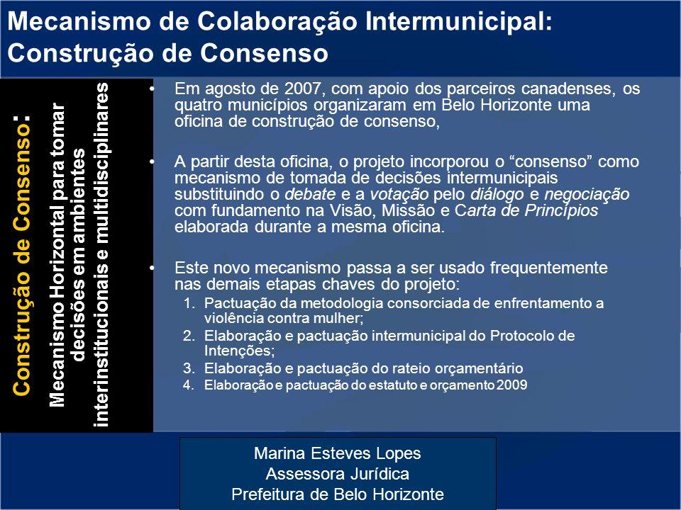 Mecanismo de Colaboração Intermunicipal: Construção de Consenso