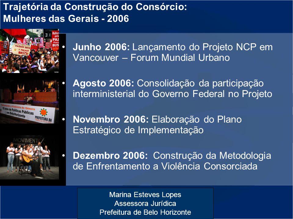 Trajetória da Construção do Consórcio: Mulheres das Gerais - 2006