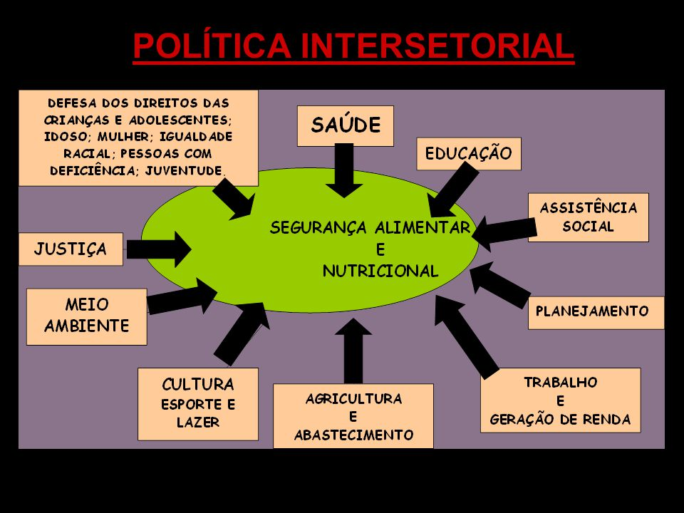 POLÍTICA INTERSETORIAL